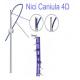 Nici COG Caniula 4D ( 5 szt )